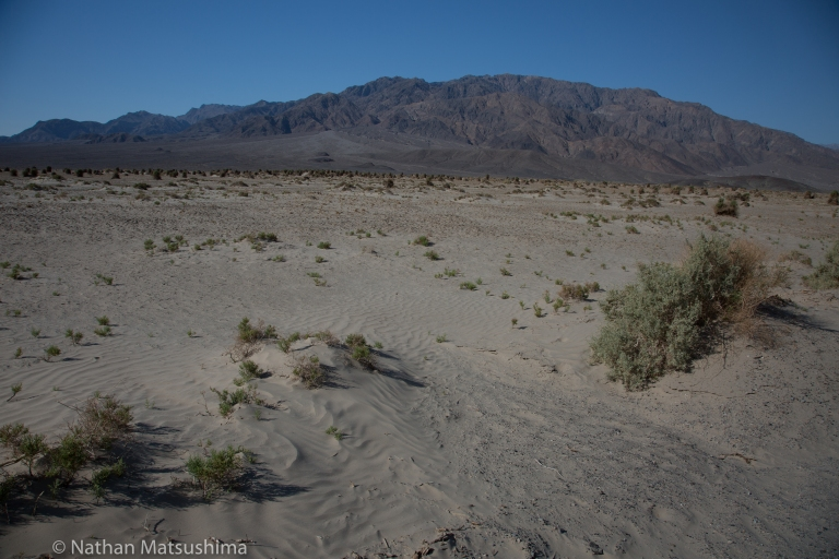 death-valley-29-May-2016-4