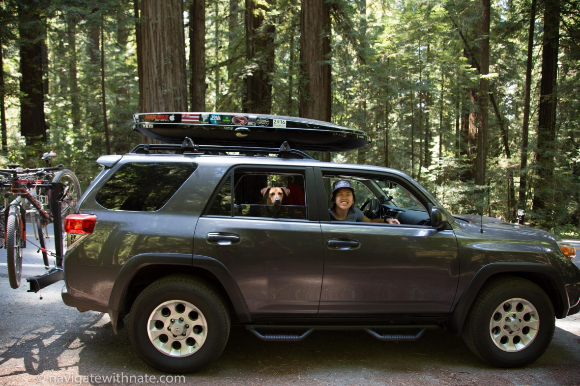 redwood state and national park.jpg